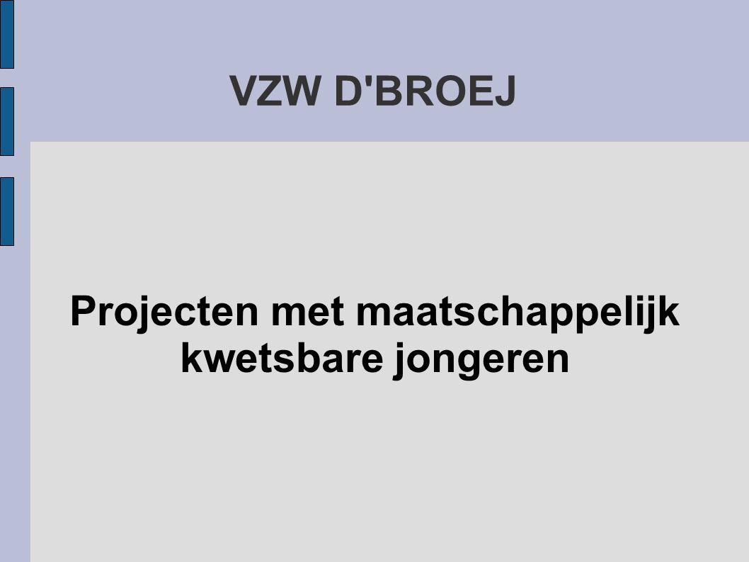 VZW D BROEJ Projecten met maatschappelijk kwetsbare jongeren