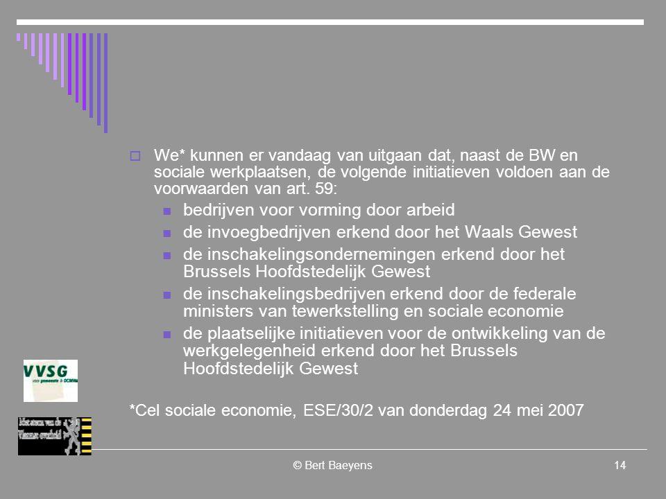 © Bert Baeyens14  We* kunnen er vandaag van uitgaan dat, naast de BW en sociale werkplaatsen, de volgende initiatieven voldoen aan de voorwaarden van art.