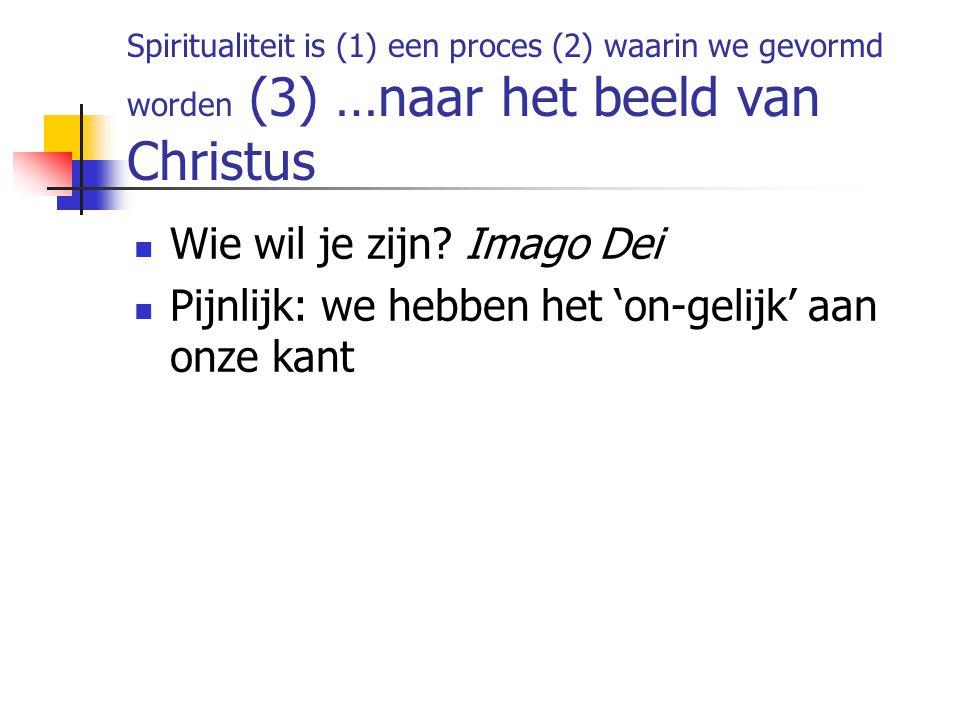 Spiritualiteit is (1) een proces (2) waarin we gevormd worden (3) …naar het beeld van Christus Wie wil je zijn.