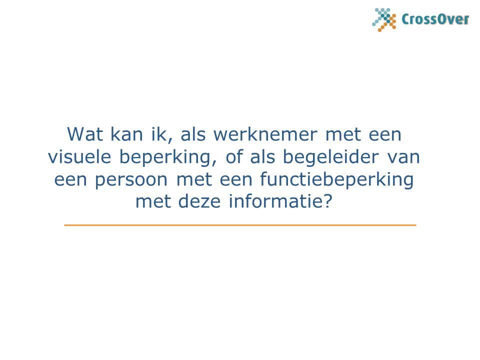 Wat kan ik, als werknemer met een visuele beperking, of als begeleider van een persoon met een functiebeperking met deze informatie?