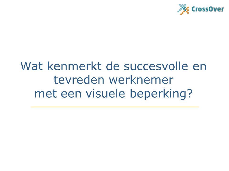 Wat kenmerkt de succesvolle en tevreden werknemer met een visuele beperking?