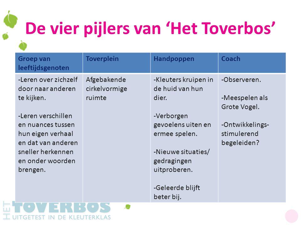 De vier pijlers van 'Het Toverbos' Groep van leeftijdsgenoten ToverpleinHandpoppenCoach -Leren over zichzelf door naar anderen te kijken. -Leren versc