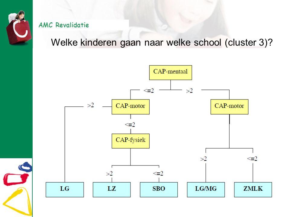 AMC Revalidatie Welke kinderen gaan naar welke school (cluster 3)?