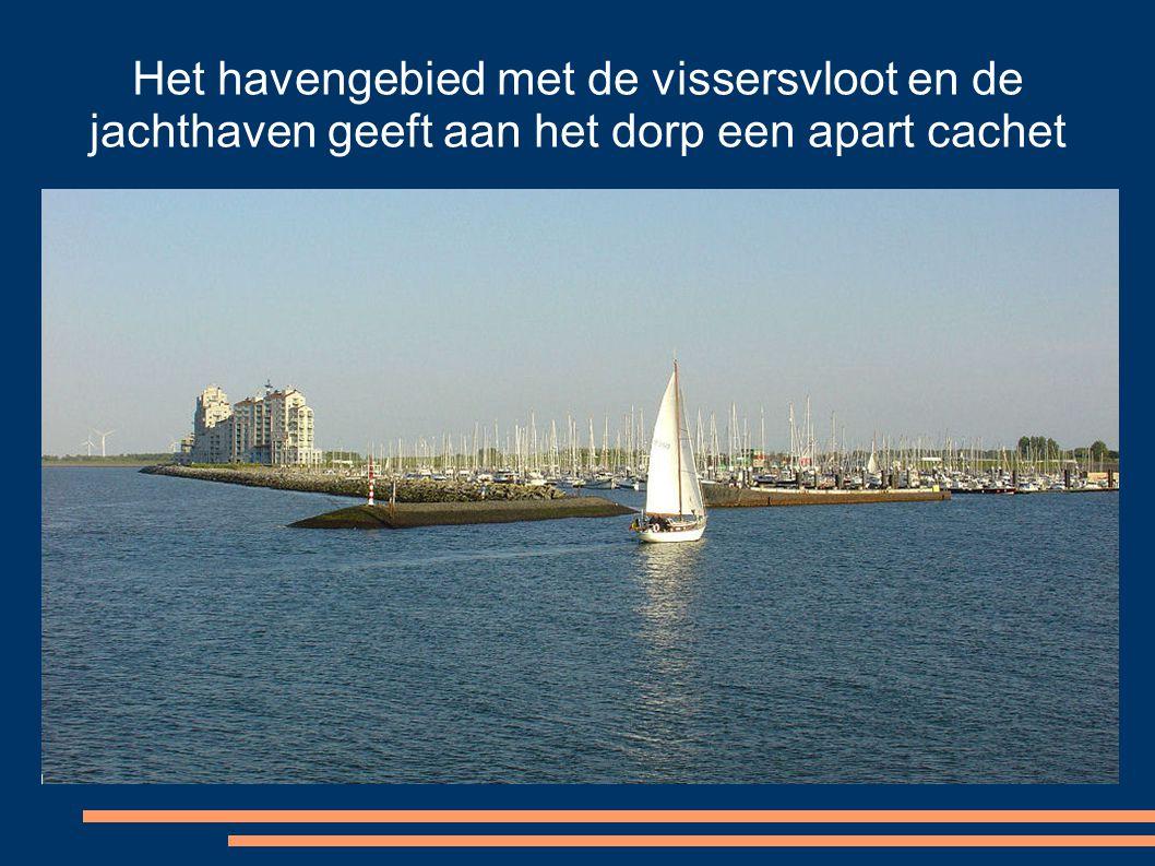 Het havengebied met de vissersvloot en de jachthaven geeft aan het dorp een apart cachet