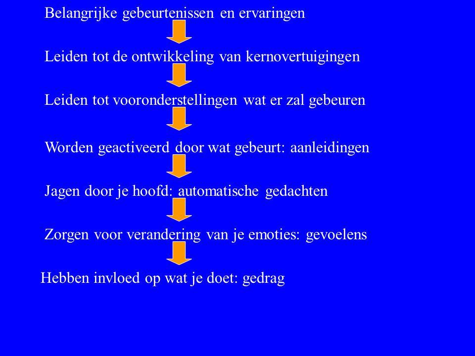 Belangrijke gebeurtenissen en ervaringen Leiden tot de ontwikkeling van kernovertuigingen Leiden tot vooronderstellingen wat er zal gebeuren Worden ge