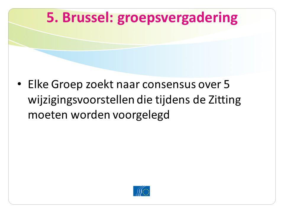 5. Brussel: groepsvergadering Elke Groep zoekt naar consensus over 5 wijzigingsvoorstellen die tijdens de Zitting moeten worden voorgelegd