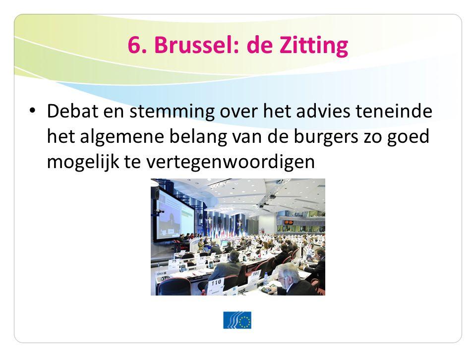 6. Brussel: de Zitting Debat en stemming over het advies teneinde het algemene belang van de burgers zo goed mogelijk te vertegenwoordigen