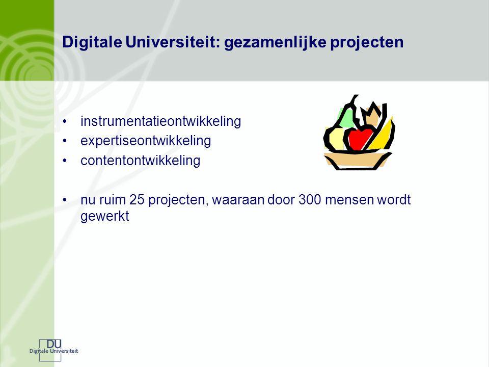 Digitale Universiteit: gezamenlijke projecten instrumentatieontwikkeling expertiseontwikkeling contentontwikkeling nu ruim 25 projecten, waaraan door 300 mensen wordt gewerkt