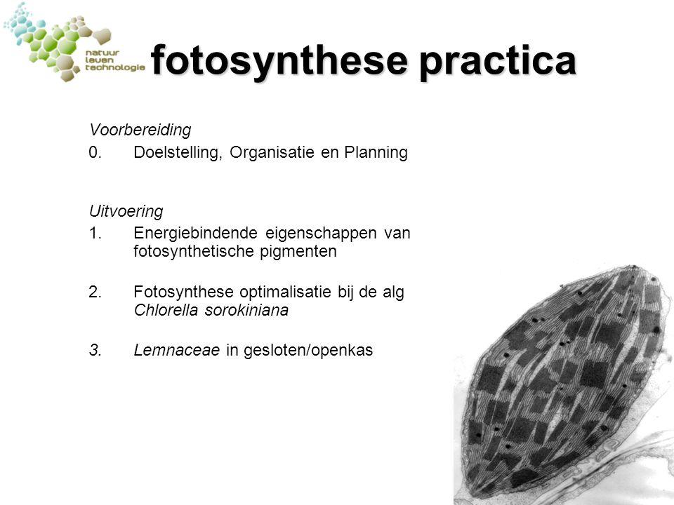 fotosynthese practica Voorbereiding 0.Doelstelling, Organisatie en Planning Uitvoering 1.Energiebindende eigenschappen van fotosynthetische pigmenten