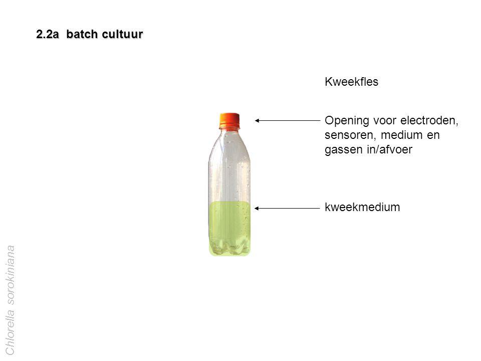 2.2a batch cultuur Kweekfles Opening voor electroden, sensoren, medium en gassen in/afvoer kweekmedium Chlorella sorokiniana