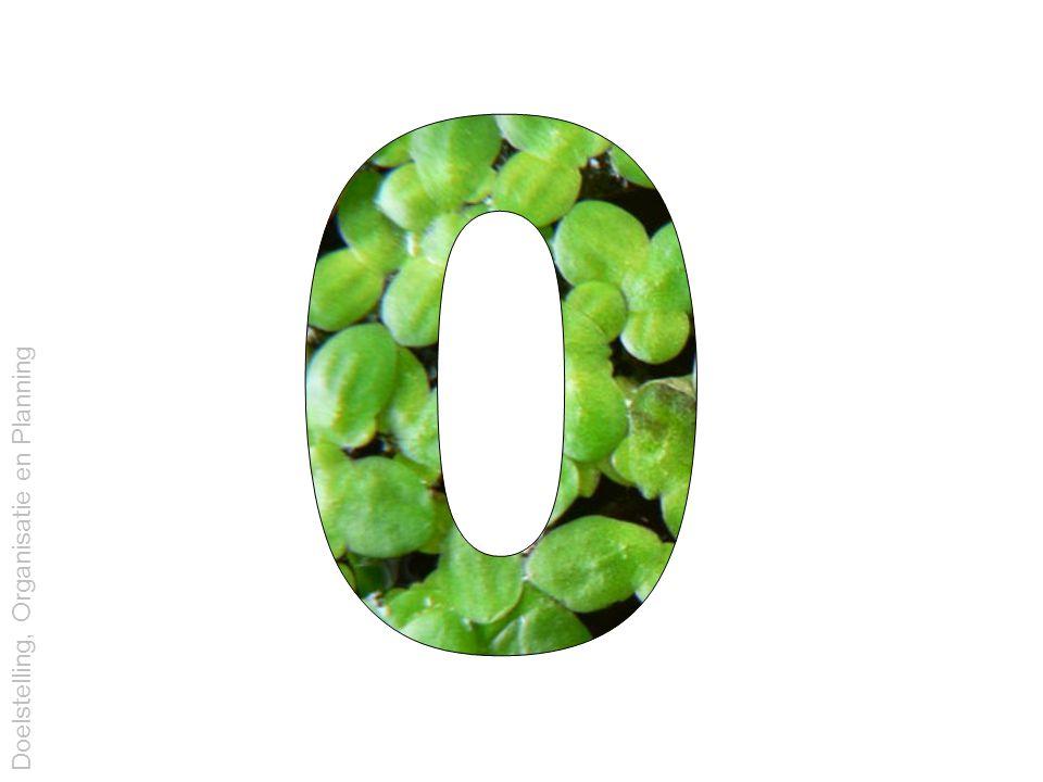 0.10 Voorkweek erlenmeyer (met vette wattenprop) alg of eendekroos kweekmedium (200 ml, volgens protocol) Doelstelling, Organisatie en Planning