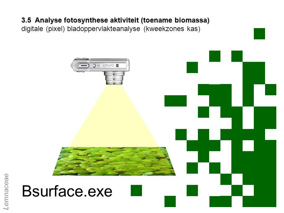 3.5 Analyse fotosynthese aktiviteit (toename biomassa) 3.5 Analyse fotosynthese aktiviteit (toename biomassa) digitale (pixel) bladoppervlakteanalyse