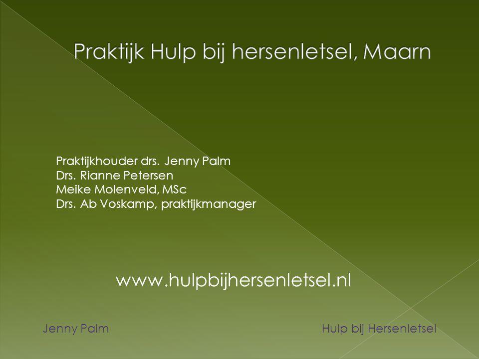 Jenny Palm Hulp bij Hersenletsel Praktijkhouder drs. Jenny Palm Drs. Rianne Petersen Meike Molenveld, MSc Drs. Ab Voskamp, praktijkmanager www.hulpbij