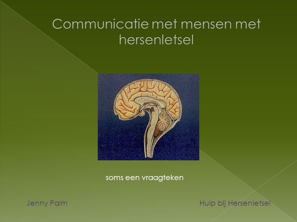 soms een vraagteken Jenny Palm Hulp bij Hersenletsel