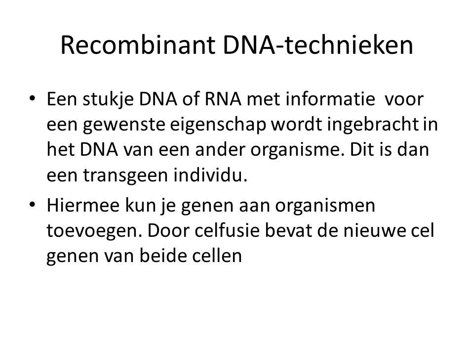 Recombinant DNA-technieken Een stukje DNA of RNA met informatie voor een gewenste eigenschap wordt ingebracht in het DNA van een ander organisme. Dit