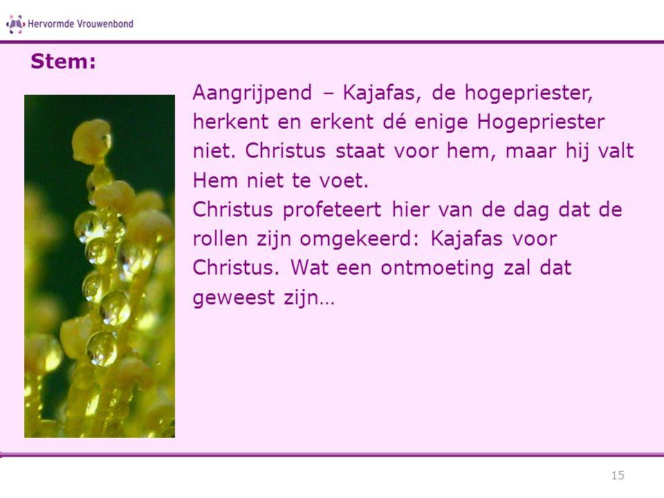 Aangrijpend – Kajafas, de hogepriester, herkent en erkent dé enige Hogepriester niet.