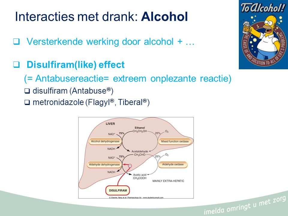 Interacties met drank: Pompelmoessap  Pompelmoes(sap) = inhibitor van CYP 3A4  GM A remt de metabolisatie van GM B  Snel effect  GM B = Substraat van CYP3A4 => interactie => toxiciteit of therapiefalen (indien B = prodrug)