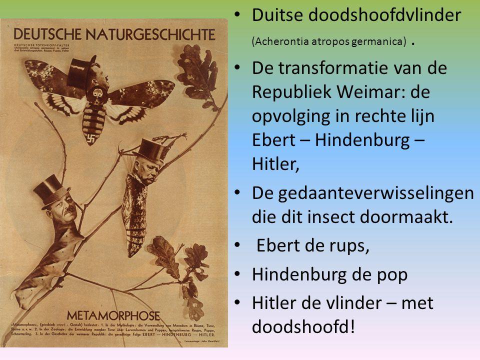 Duitse doodshoofdvlinder (Acherontia atropos germanica). De transformatie van de Republiek Weimar: de opvolging in rechte lijn Ebert – Hindenburg – Hi