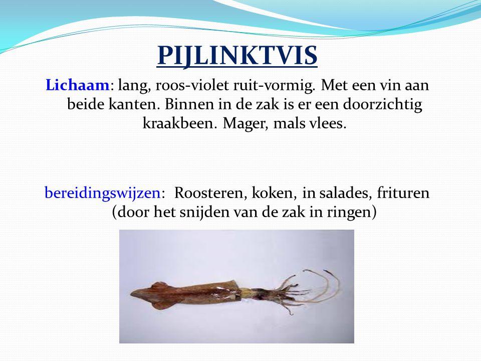 PIJLINKTVIS Lichaam: lang, roos-violet ruit-vormig. Met een vin aan beide kanten. Binnen in de zak is er een doorzichtig kraakbeen. Mager, mals vlees.