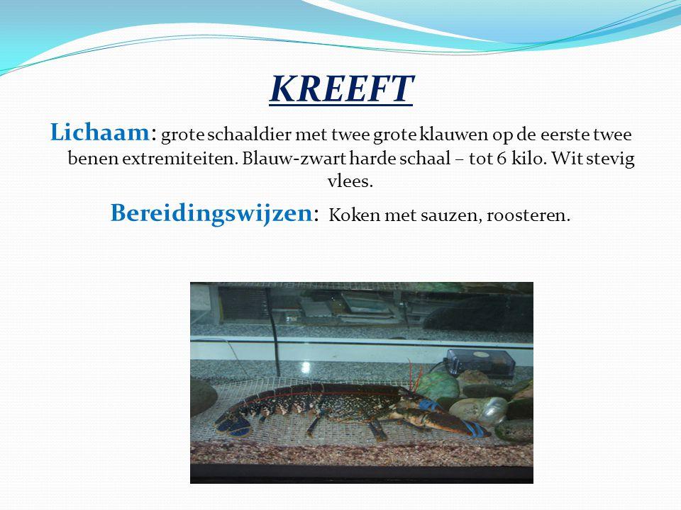 KREEFT Lichaam: grote schaaldier met twee grote klauwen op de eerste twee benen extremiteiten. Blauw-zwart harde schaal – tot 6 kilo. Wit stevig vlees