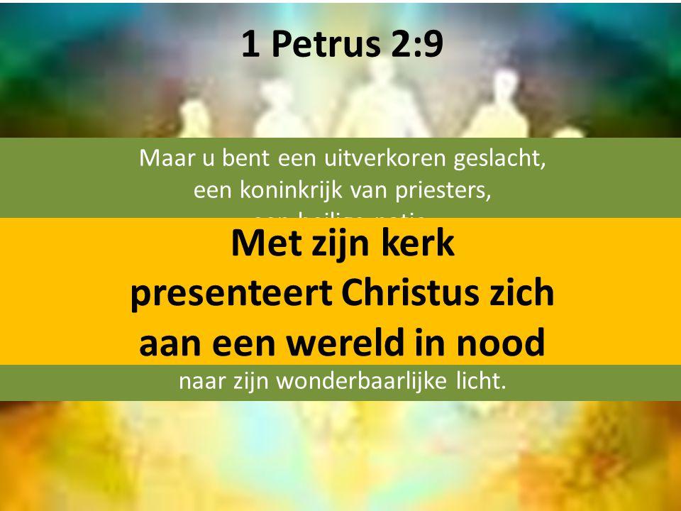 1 Petrus 2:9 Maar u bent een uitverkoren geslacht, een koninkrijk van priesters, een heilige natie, een volk dat God zich verworven heeft om de grote daden te verkondigen van hem die u uit de duisternis heeft geroepen naar zijn wonderbaarlijke licht.
