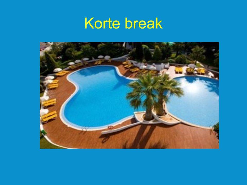 Korte break
