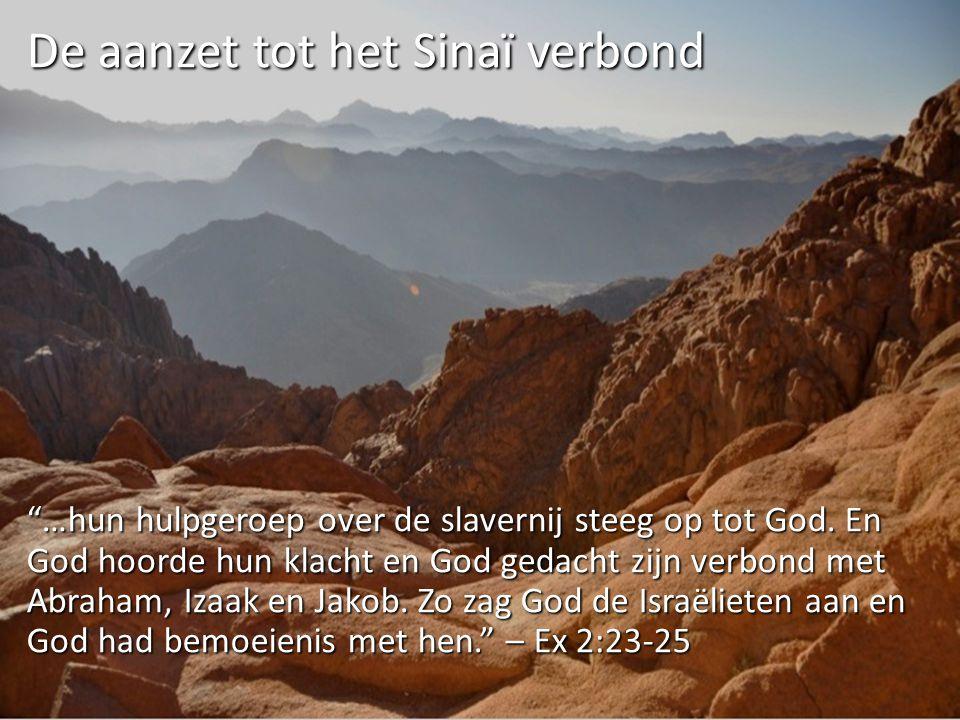 """""""…hun hulpgeroep over de slavernij steeg op tot God. En God hoorde hun klacht en God gedacht zijn verbond met Abraham, Izaak en Jakob. Zo zag God de I"""