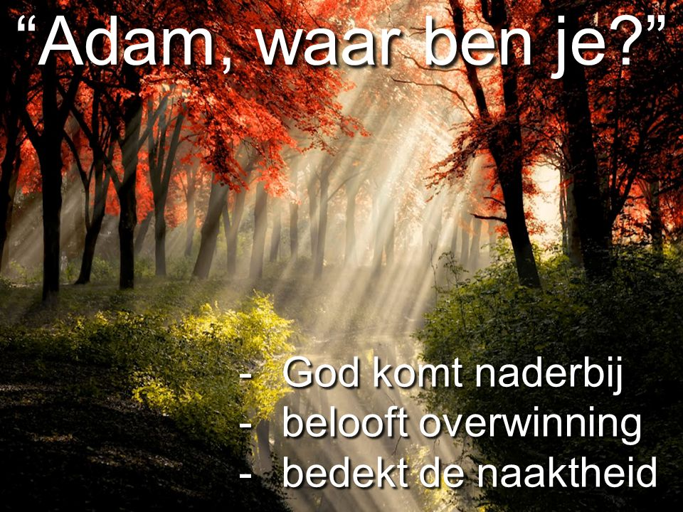 """""""Adam, waar ben je?"""" -God komt naderbij -belooft overwinning -bedekt de naaktheid"""