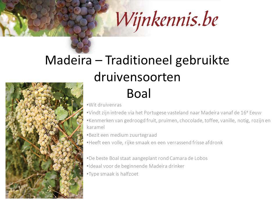 Madeira – Traditioneel gebruikte druivensoorten Boal Wit druivenras Vindt zijn intrede via het Portugese vasteland naar Madeira vanaf de 16 e Eeuw Ken