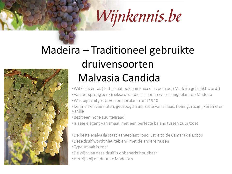 Madeira – Traditioneel gebruikte druivensoorten Malvasia Candida Wit druivenras ( Er bestaat ook een Roxa die voor rode Madeira gebruikt wordt) Van oo