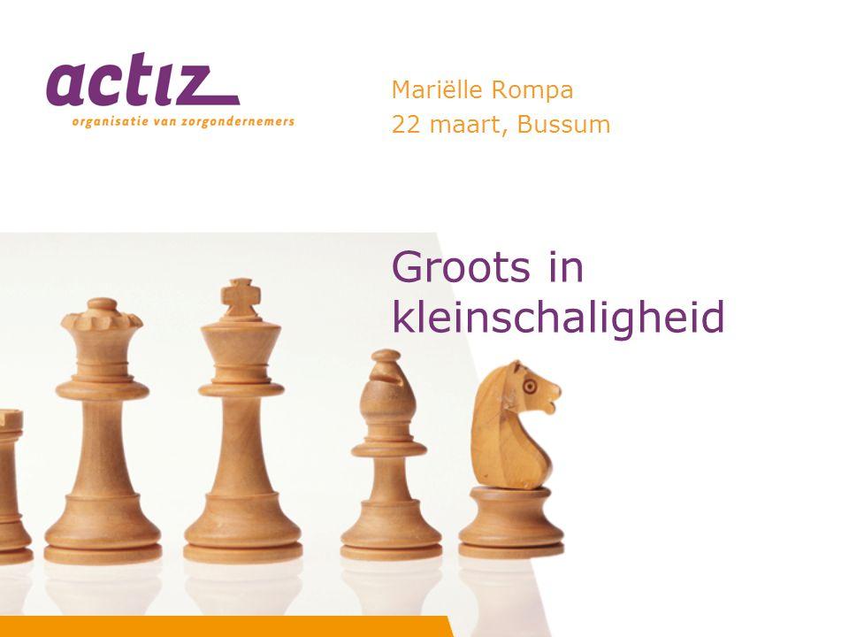 Groots in kleinschaligheid Mariëlle Rompa 22 maart, Bussum