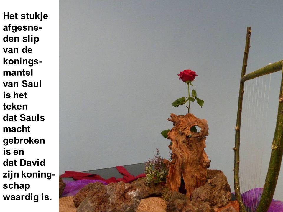 Het stukje afgesne- den slip van de konings- mantel van Saul is het teken dat Sauls macht gebroken is en dat David zijn koning- schap waardig is.