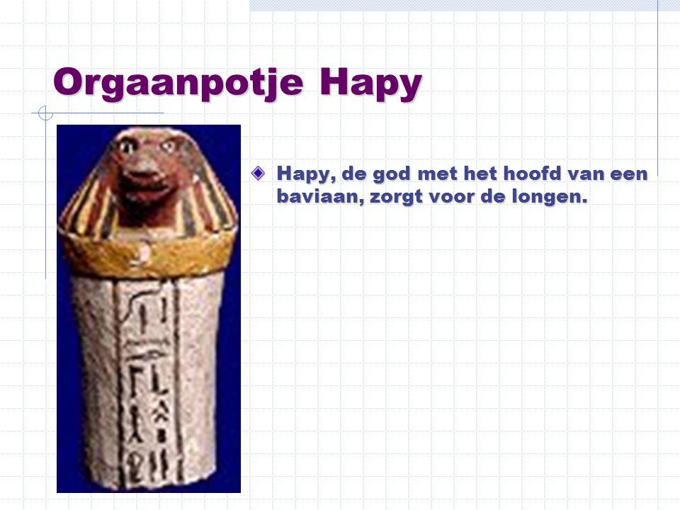 Orgaanpotje Hapy Hapy, de god met het hoofd van een baviaan, zorgt voor de longen.
