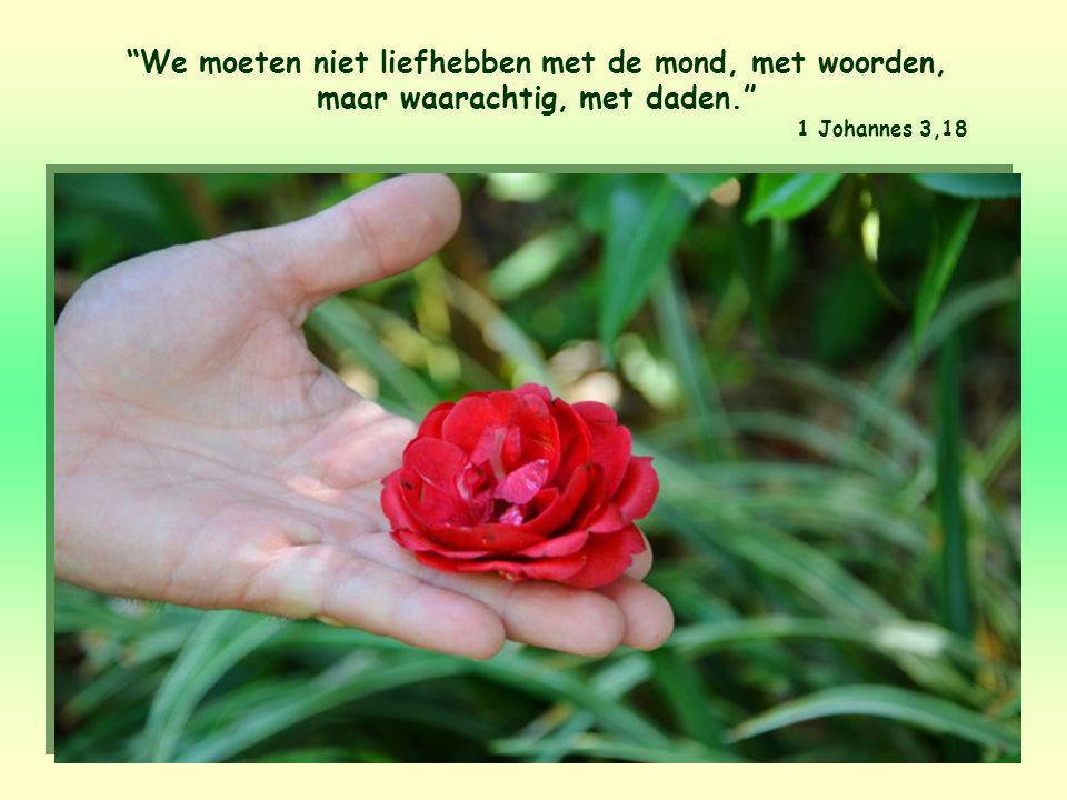 We moeten niet liefhebben met de mond, met woorden, maar waarachtig, met daden. 1 Johannes 3,18