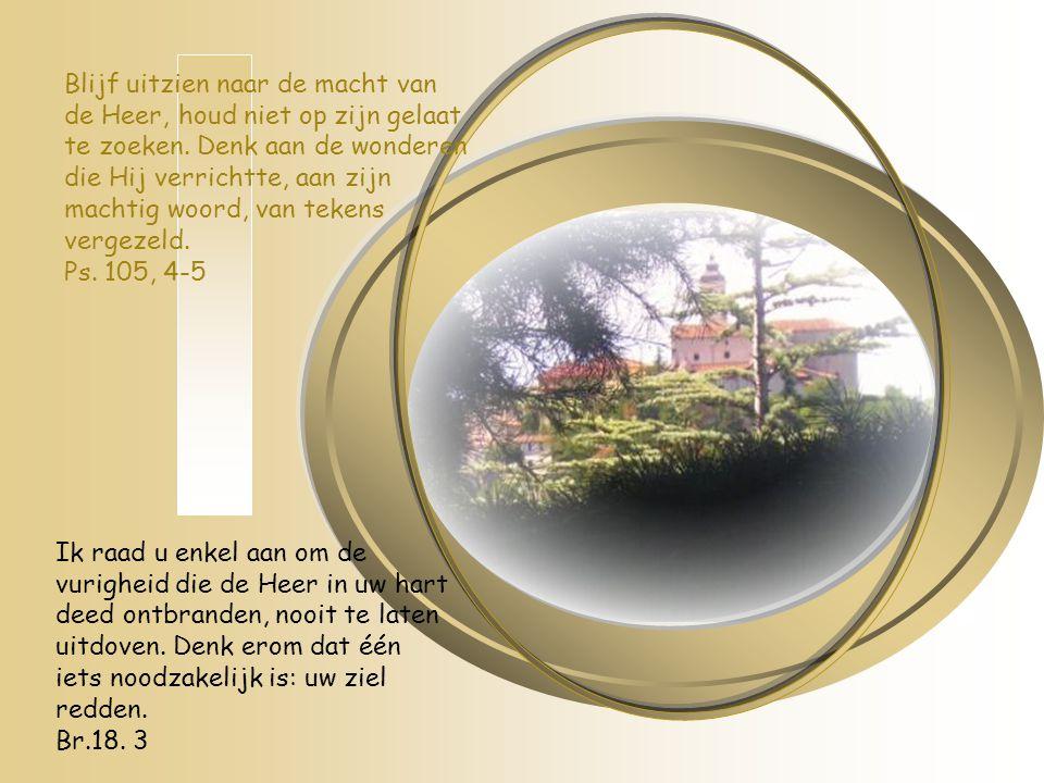 Blijf uitzien naar de macht van de Heer, houd niet op zijn gelaat te zoeken. Denk aan de wonderen die Hij verrichtte, aan zijn machtig woord, van teke