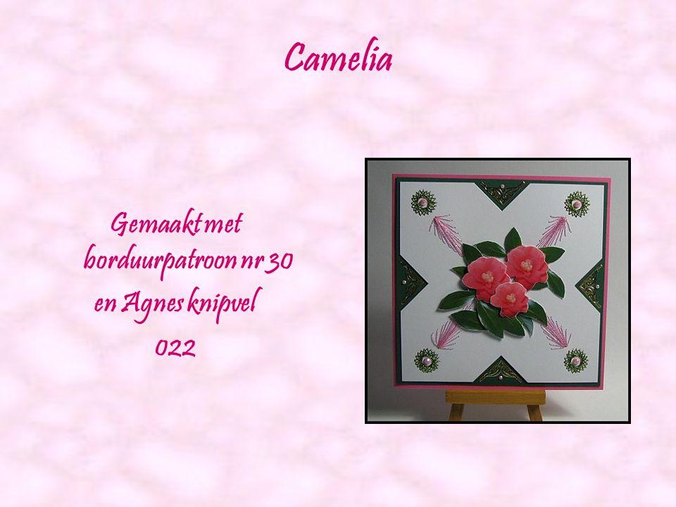 Bosmanneke Gemaakt met borduurpatroon nr 27 en Agnes knipvel 006