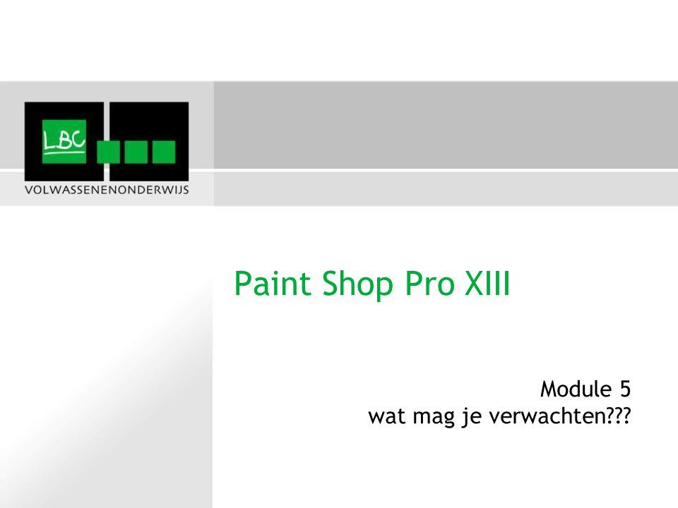 Paint Shop Pro XIII Module 5 wat mag je verwachten