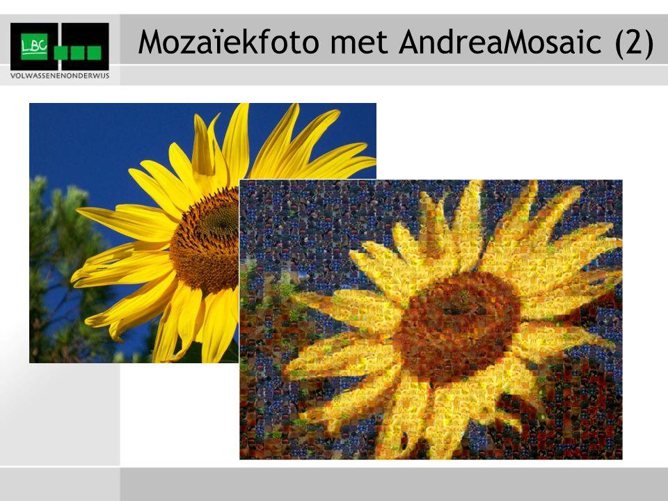 Mozaïekfoto met AndreaMosaic (2)