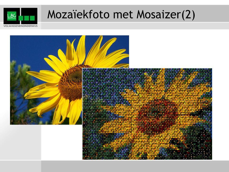 Mozaïekfoto met Mosaizer(2)