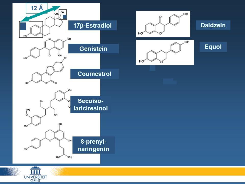 17  -Estradiol Genistein Coumestrol Secoiso- lariciresinol 8-prenyl- naringenin Daidzein Equol 12 Ǻ
