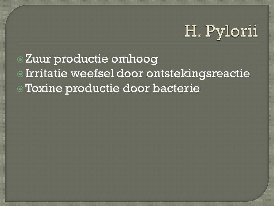  Zuur productie omhoog  Irritatie weefsel door ontstekingsreactie  Toxine productie door bacterie