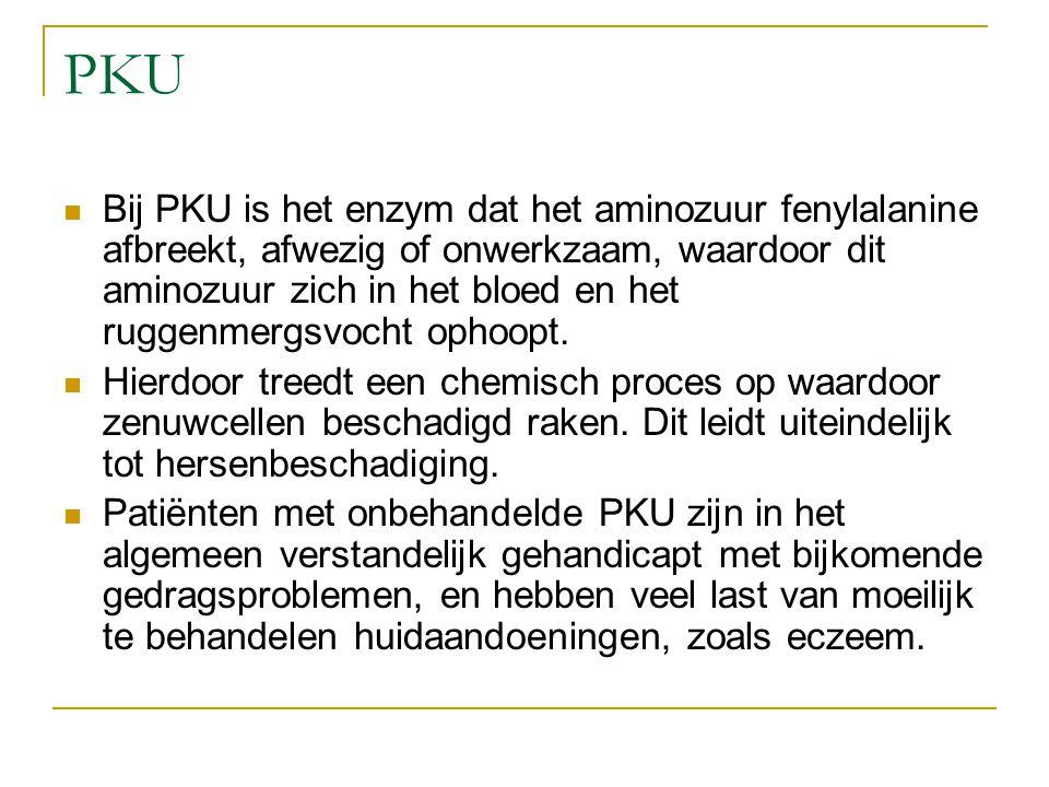 PKU Bij PKU is het enzym dat het aminozuur fenylalanine afbreekt, afwezig of onwerkzaam, waardoor dit aminozuur zich in het bloed en het ruggenmergsvo