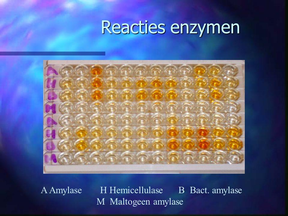 Reacties enzymen A Amylase H Hemicellulase B Bact. amylase M Maltogeen amylase