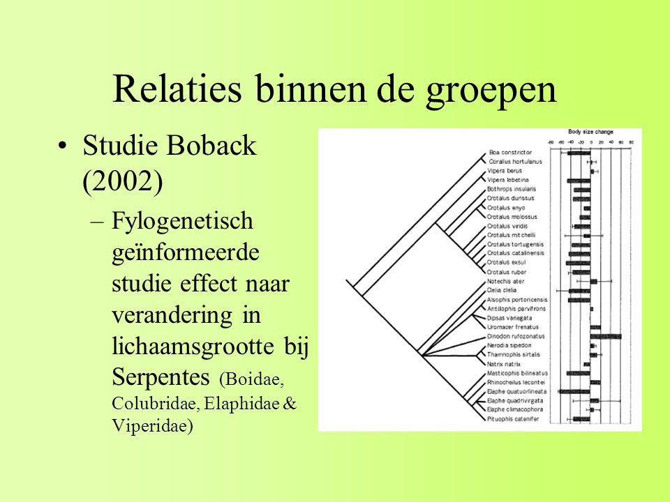 Relaties binnen de groepen Studie Boback (2002) –Fylogenetisch geïnformeerde studie effect naar verandering in lichaamsgrootte bij Serpentes (Boidae, Colubridae, Elaphidae & Viperidae)