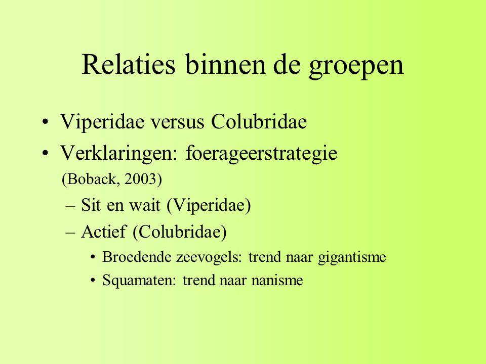 Relaties binnen de groepen Viperidae versus Colubridae Verklaringen: foerageerstrategie (Boback, 2003) –Sit en wait (Viperidae) –Actief (Colubridae) Broedende zeevogels: trend naar gigantisme Squamaten: trend naar nanisme