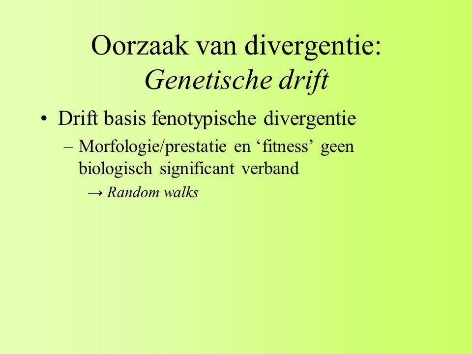 Oorzaak van divergentie: Genetische drift Drift basis fenotypische divergentie –Morfologie/prestatie en 'fitness' geen biologisch significant verband → Random walks