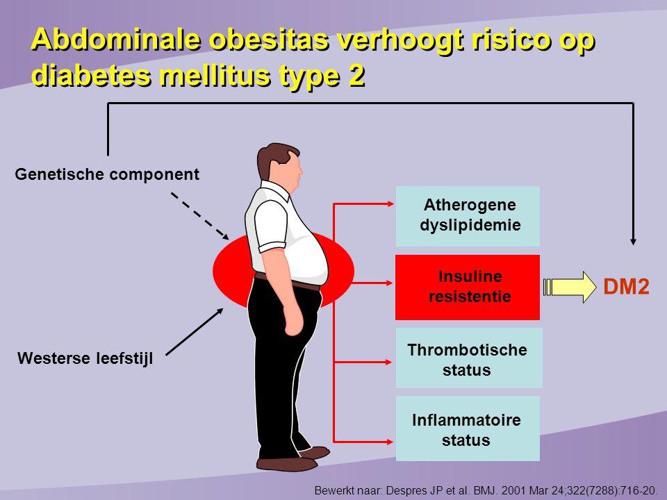 Atherogene dyslipidemie Insuline resistentie Thrombotische status Inflammatoire status Genetische component Westerse leefstijl DM2 Abdominale obesitas