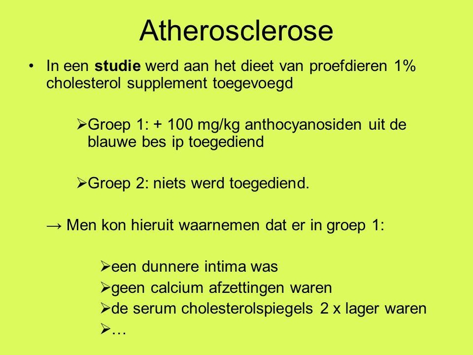 Atherosclerose In een studie werd aan het dieet van proefdieren 1% cholesterol supplement toegevoegd  Groep 1: + 100 mg/kg anthocyanosiden uit de blauwe bes ip toegediend  Groep 2: niets werd toegediend.