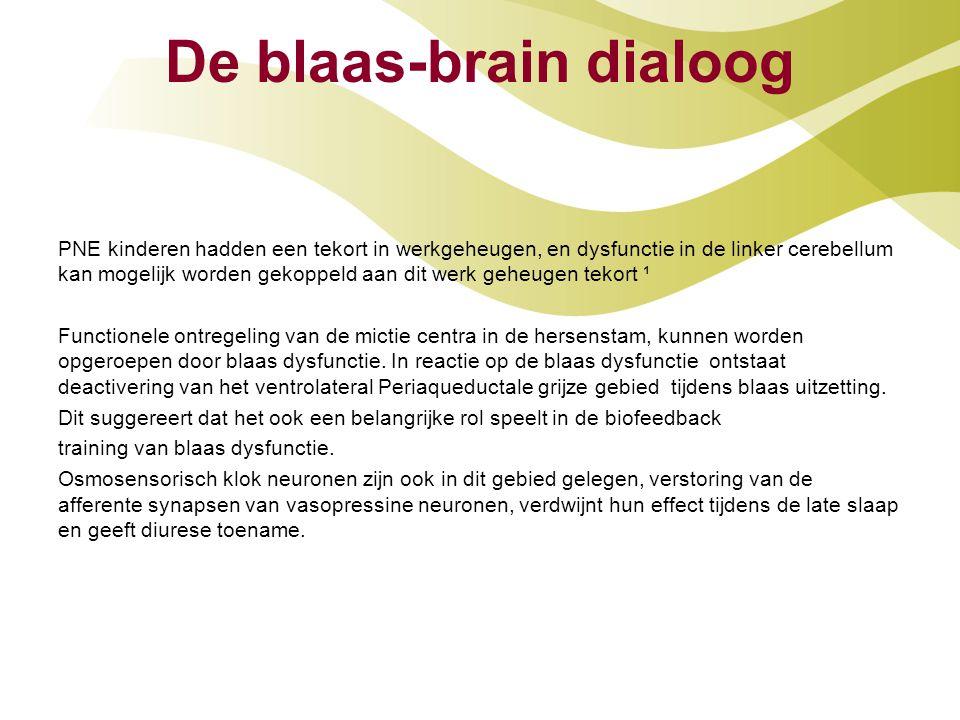 De blaas-brain dialoog PNE kinderen hadden een tekort in werkgeheugen, en dysfunctie in de linker cerebellum kan mogelijk worden gekoppeld aan dit wer