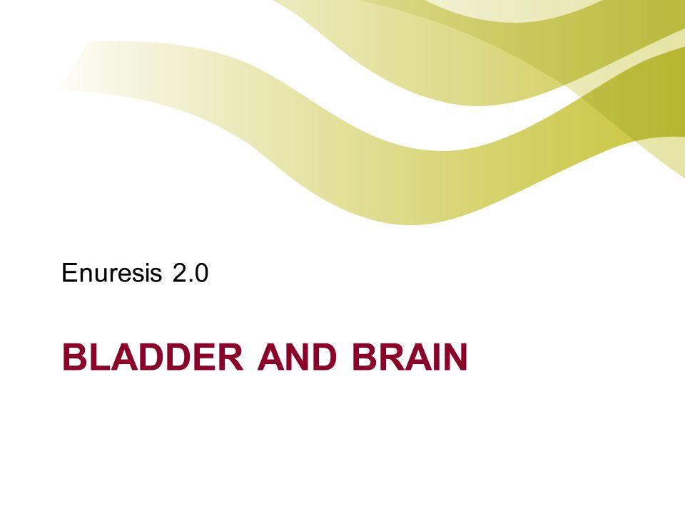 BLADDER AND BRAIN Enuresis 2.0